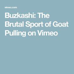 Buzkashi: The Brutal Sport of Goat Pulling on Vimeo