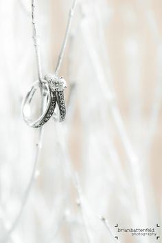 Wedding ring shot in white tree branches