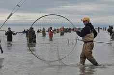 Combat fishing and dip netting.