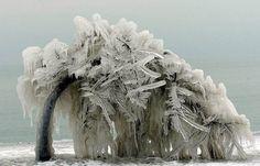 Frozen tree  More on my Blogspot