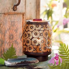 Daisy lantern warmer. Gorgeous 8 inch tall lantern! It beautifully casts daisy shadows. $50 www.quin.scentsy.us