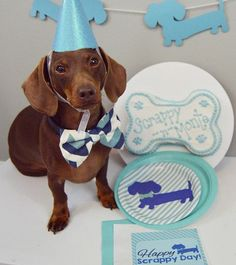 Add some more doxie to your wiener party with our dachshund banners, available…