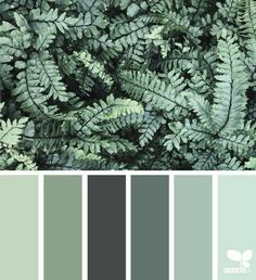 Bedroom colors green design seeds Ideas for 2019 Palettes Color, Colour Schemes, Color Combinations, Turquoise Color Palettes, Design Seeds, Color Palette For Home, Green Colour Palette, Green Pallete, Nature Color Palette