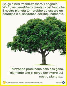 Se gli alberi trasmettessero il segnale Wi-Fi, ne verrebbero piantata cosi tanti che il nostro pianeta tornerebbe ad essere un paradiso  si salverebbe dall'inquinamento.   Purtroppo producono solo ossigeno, l'elemento che ci serve per vivere sul nostro pianeta...