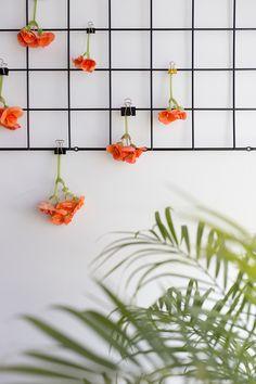 Urban Jungle Bloggers: Plants & Flowers by @ebomonline