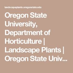 Oregon State University, Department of Horticulture | Landscape Plants | Oregon State University