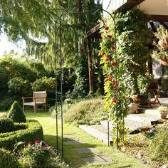 Trockenmauer Mit Gemüsebeet Im Reihenhausgarten | Unser Kleiner  Doppelhaushälften Garten | Pinterest | Reihenhausgarten, Gemüsebeet Und  Doppelhaushälfte