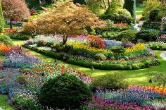 Lugares incríveis para admirar a primavera no Hemisfério Norte