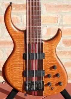 Guitar Case, Cool Guitar, Bass Guitars, Electric Guitars, Custom Bass Guitar, Sweet Sweet, Tobias, Rigs, Art Forms