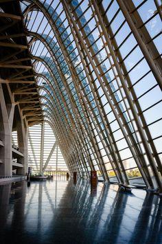 Santiago Calatrava || Museo Principe Felipe, Ciudad de las Artes y las Ciencias (Valencia, España)