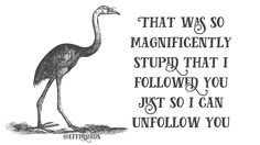 THAT WAS SO MAGNIFICENTLY STUPID THAT I FOLLOWED YOU JUST SO I CAN UNFOLLOW YOU