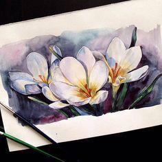 Watercolorist: @y_yumaeva #watercolor #waterblog #акварель #aquarelle…