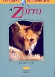 +12 El zorro: descripción, comportamiento, vida social, mitología, observación...