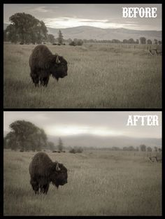 How to get shallow depth-of-field and tilt shift effects using Lightroom's Gradient Tool