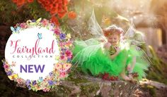 Photoshop Fairy Wing Overlays, Fairy Dust Brushes, Actions & More