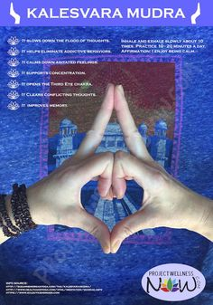 "Benefits Of Kalesvara Mudra - In Sanscrit, Mudra means ""closure"" or ""seal"". Mudras also called yoga for the fingers, are specific hand positions that influence the energy flow in the body. They also help the expansion of consciousness. Yoga Kundalini, Pranayama, Finger Yoga, Hand Mudras, Les Chakras, Yoga Mantras, Yoga Benefits, Tantra, Ayurveda"