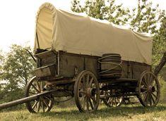 Mormon Pioneers