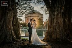 Recent prewedding photoshoot at Palace of fine arts in San Francisco, CA