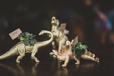 I know they're weird but so am I. They're mini dinosaurs with succulents in them as giveaways :)