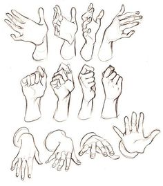 Body Sketches, Anatomy Sketches, Anatomy Drawing, Anatomy Art, Art Drawings Sketches, Hand Drawings, Hand Anatomy, Sketches Of Hands, Drawings Of Hands