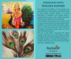 Find all types of rudraksha & rudraksha mala online only on Rudralife, genuine & high quality rudraksha bead provider.