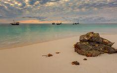 Nungwi beach Zanzibar Island review Global Holidays, Best Bucket List, Siargao Island, Water Villa, Dubai Hotel, Beaches In The World, Philippines Travel, Amazing Destinations, Luxury Travel