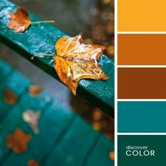 Palette colors yellow ocher and blue duck . Orange Color Palettes, Color Schemes Colour Palettes, Paint Color Schemes, Fall Color Palette, Colour Pallette, Color Combinations, Paint Colors, Room Colors, House Colors