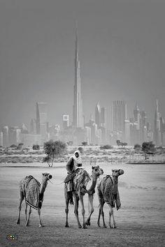 Dubai ... hotels in Dubai marina #Dubai http://holipal.com/hotels/