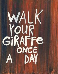 Walking your giraffe is probably a really good idea.