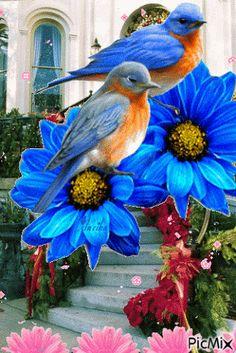 Resultado de imagem para gif desenho flor