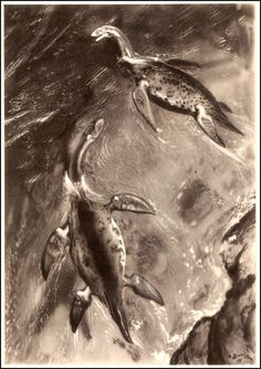 Cryptoclidus | Zdeněk Burian (1905-1981) | Prehistoric Animals (1960)