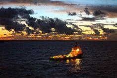 go in the sea little ship
