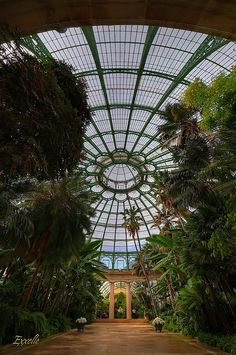 Glass dome of the Royal Greenhouse of Laeken, Brussels.