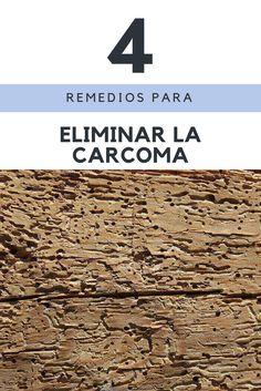 Cómo eliminar la carcoma y los insectos que atacan a la madera  #carcoma #muebles #xilofagos #tips