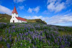 Vik i Myrdal Church