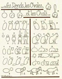 Diy drawing a cat