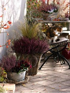autumn balcony decor