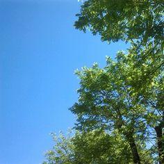 E a metà maggio questo é il blu del cielo della Romagna