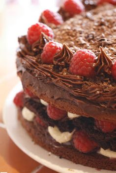 chocolate cake with brownie centre