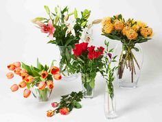 Kukkakimpun hoito-ohjeet