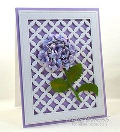 Susan's Garden Hydrangea by Kittie Caracciolo...check out Susan Tierney Cockburn's floral release by Elizabeth Craft Designs. My project today was made using the Susan's Garden Hydrangea and the stem from the Susan's Garden Notes Hydrangea.  I framed my hydrangea using the Taylored Expressions Floral Lattice and the Impression Obsession All-in-One Rectangle Frames 2.