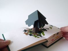 """""""Branches"""" by Chisato Tamabayashi: This book is designed both as a pop-up book but also as a fold-out, full pop-up scene. The book was bound in such a way that one could communicate two different views. The book features a family of trees, in different seasons and of different generations. When opened individually, the paper canopies slowly blossom, as if the action of opening the page gives life to the tree. Fully folded out, the spiral layout allows all the trees to gather together.  //"""