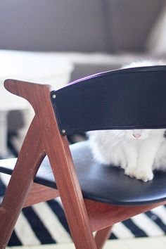 an-magritt: En stol og en katt