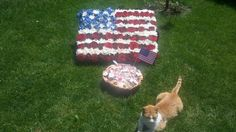 Garfield protecting  the surprises for our guests