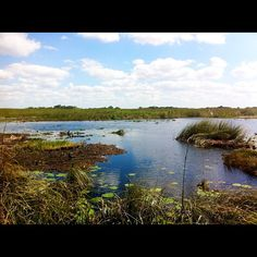 Everglades National Park nel Homestead, FL