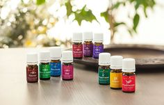 Learn how to get started with a Young Living Essential Oils Starter Kit, essential oils wholesale prices! Plus start your essential oils business.