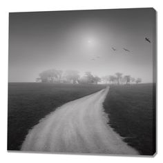 Destiny I by Moises Levy Photographic Print on Wrapped Canvas