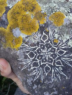 Free Stone Meditation Printable #2: Lichen Mandalas - Authentic Arts   Nature Art and Jewelry by Jenny Hoople