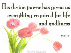 His divine power has given us everything required for life and godliness through the knowledge of Him Who called us by His own glory and goodness. -2 Peter 1:3 (HACS) ~ Thoughts on Today's Verse ~ The position and privileges that are ours in Christ Jesus and all that we will ever need to live a godly life which is pleasing to the Lord, were given to us as a free gift of God's grace – through the merit of Christ's sacrificial death at Calvary and because of His omnipotent, divine power. [...]