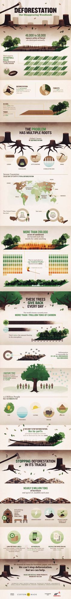 We Have Less Than 1/2 As Many Forests As In 1950